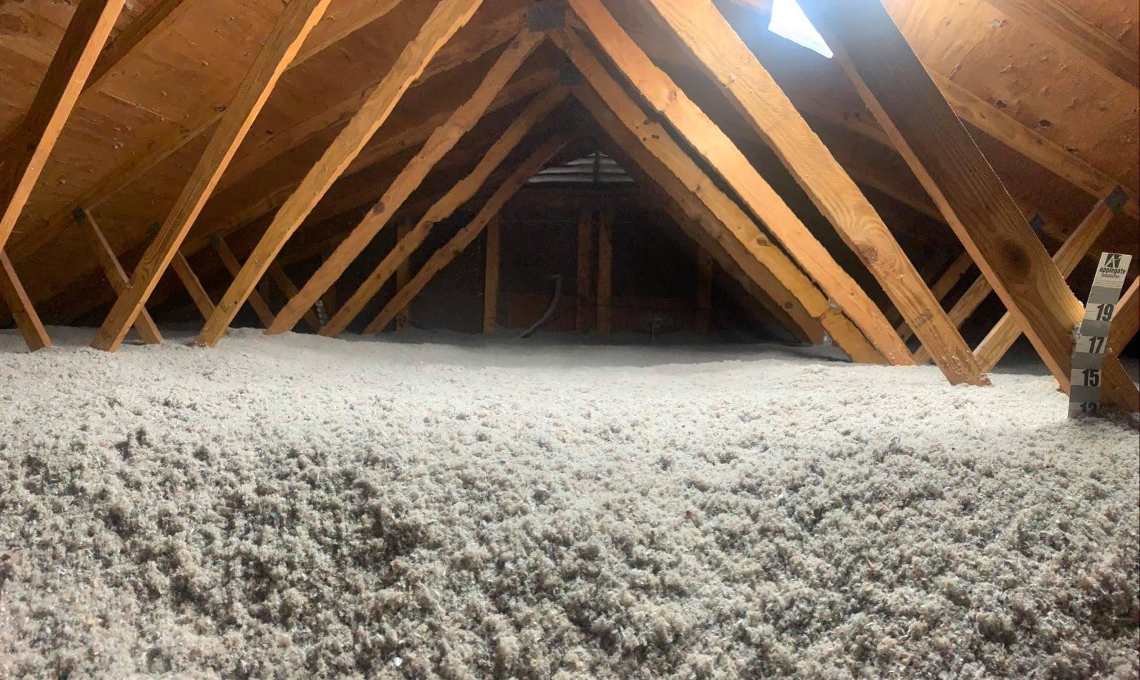 attic full of cellulose insulation